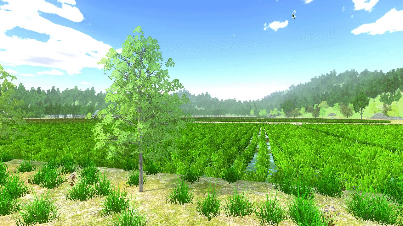 野外实践教育虚拟仿真系统3.png